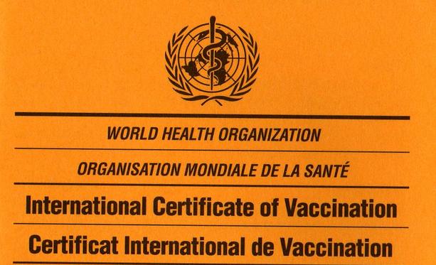 Паспорт вакцинации в Украине